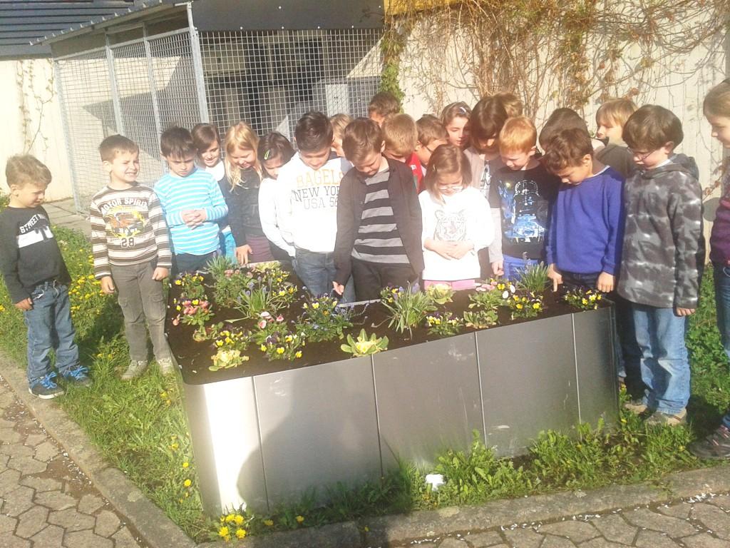 Kleine Gärtner ganz  groß in Form