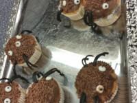 spinnenmuffins_04