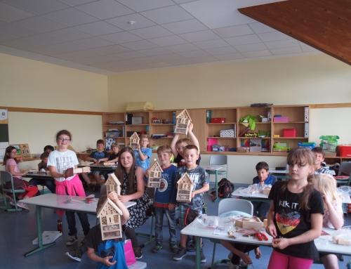 """Projekttage an der Grundschule: """"Nachhaltigkeit und Gesundheit"""""""