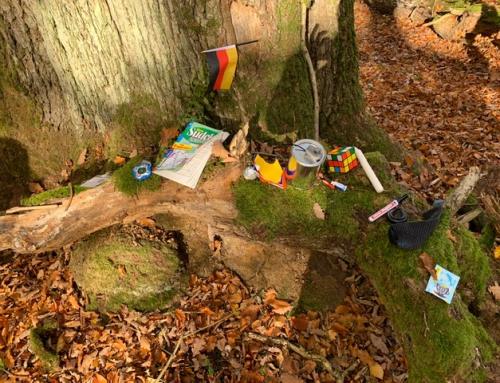 Realschule baut ein Klassenzimmer im Wald