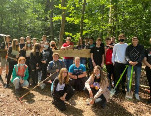 """Einfach """"Waldklasse"""": Unterricht im Waldklassenzimmer"""